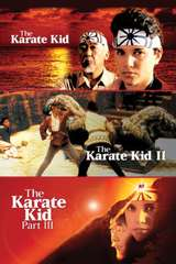Poster for Karate Kid Trilogy